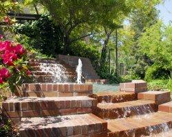 San Joaquin Delta College congratulates new and returning trustees