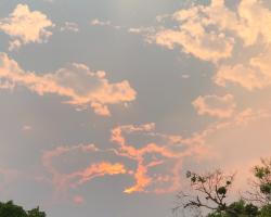 Stockton Smoky skies